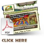 Click Here PDF